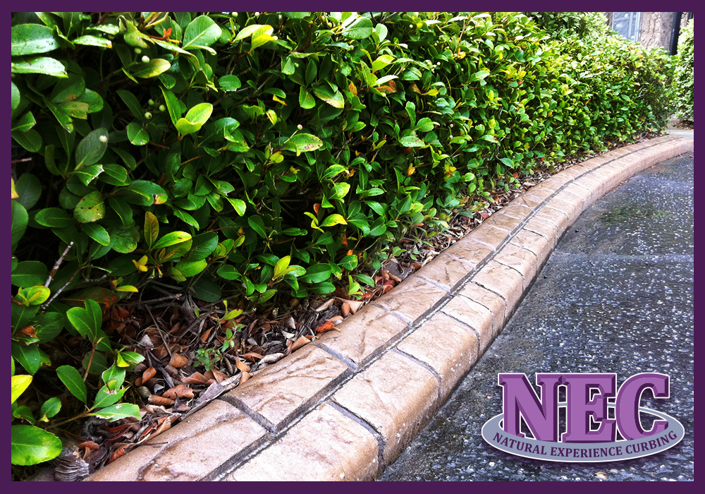 Natural Experience Curbing - Paver